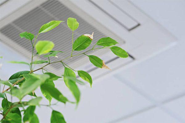 vvs køge - ventilation sundt indeklima 600x400
